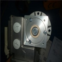 意大利Mini motor无刷-线性电机MINIACTION 300