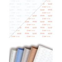 TEADIT  30SH - 高科技扩展的PTFE表