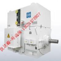 VEM高压电机